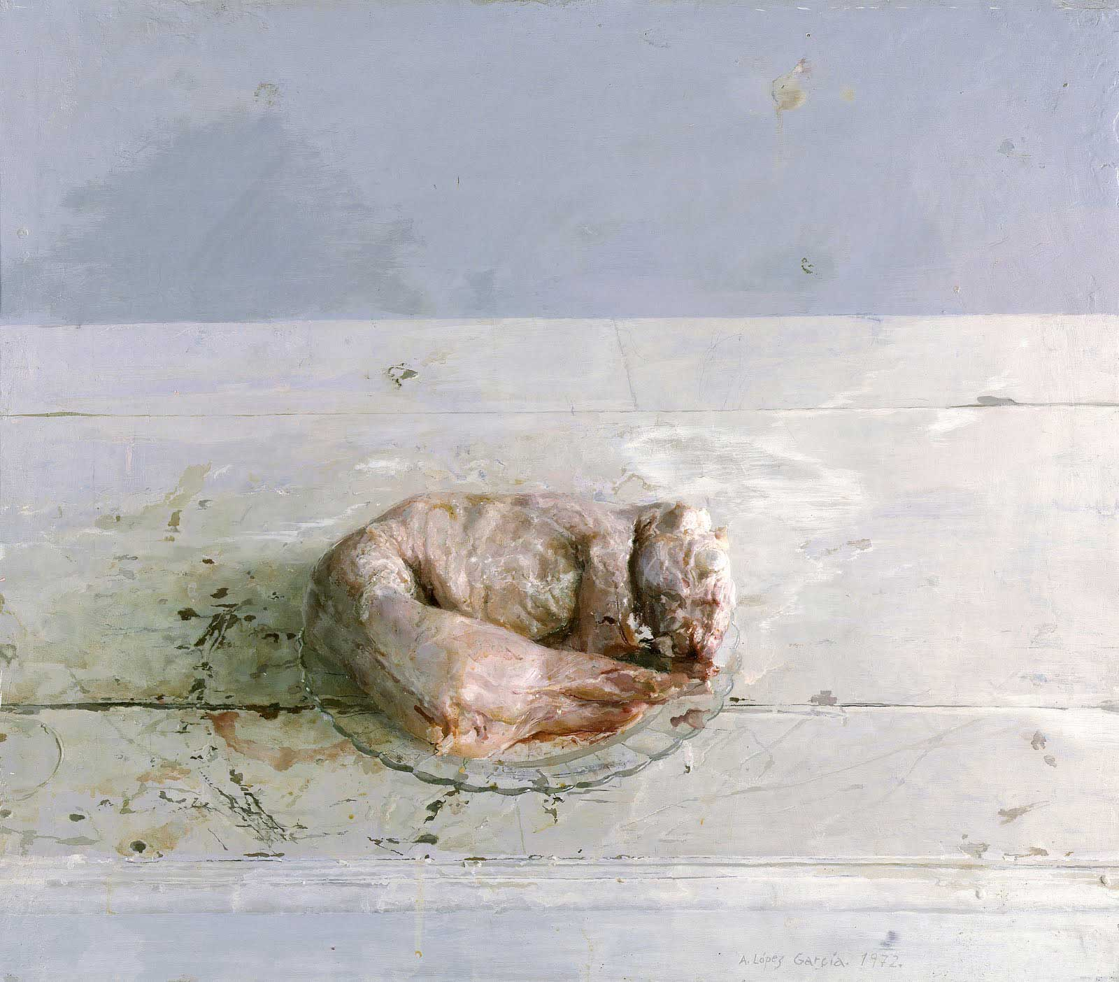 Conejo deshollado, 1972