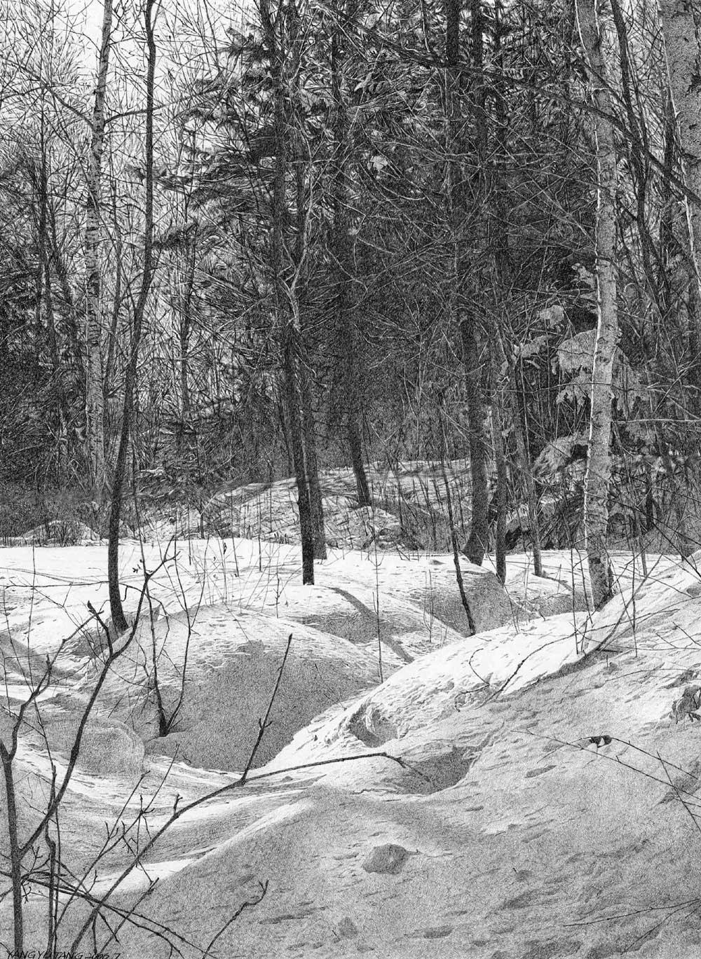 New Snow, 2006