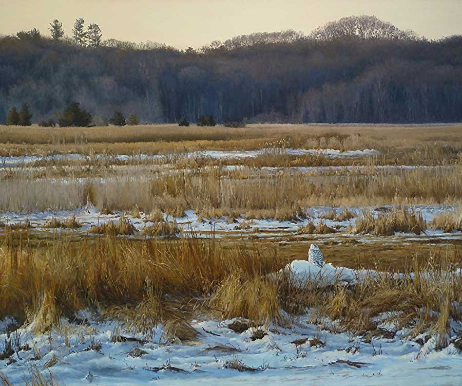 Late afternoon winter marsh, ?